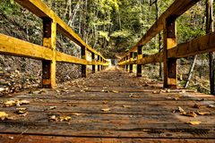 Wooden Bridge HDR. Ending in a beautiful green forest Stock Photography