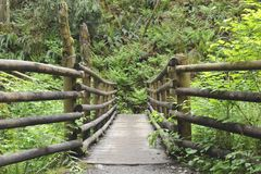 Wooden Bridge for Hikers Royalty Free Stock Images