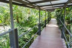 The wooden bridge in the indoor park Stock Photos