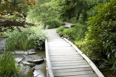 Wooden bridge in Japanese garden Stock Image