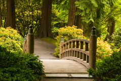 Wooden bridge in a Japanese garden Stock Images
