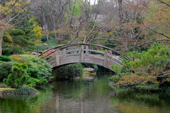 Wooden Bridge at Japanese Garden in Spring Royalty Free Stock Photography