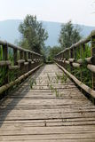 Wooden bridge on lake. Wooden bridge on the lake stock photo