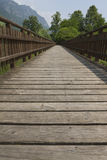 Wooden bridge on the lake. The wooden bridge on the lake Stock Photography