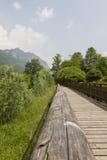 Wooden bridge on the lake. The wooden bridge on the lake Royalty Free Stock Photos