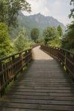 Wooden bridge on the lake. The wooden bridge on the lake Stock Images