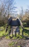 Wooden bridge on the lake. A wooden bridge on the lake Stock Photos