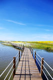 Wooden bridge into the lake of Alqueva Stock Photos