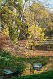 Wooden bridge and lake in autumn nature Royalty Free Stock Photo