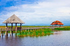 Wooden Bridge in lake under blue sky Royalty Free Stock Photography