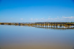 Wooden Bridge in  lake Stock Photos