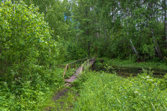 The wooden bridge leading to the Holy spring of Mary Magdalene. Wooden bridge leading to the Holy spring of Mary Magdalene in Kadyysky district of the Kostroma stock image