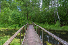 The wooden bridge leading to the Holy spring of Mary Magdalene. Wooden bridge leading to the Holy spring of Mary Magdalene in Kadyysky district of the Kostroma royalty free stock photography