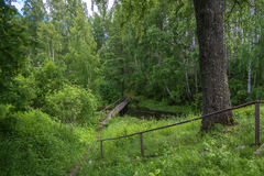 The wooden bridge leading to the Holy spring of Mary Magdalene. Wooden bridge leading to the Holy spring of Mary Magdalene in Kadyysky district of the Kostroma royalty free stock image
