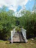 Wooden bridge leading to the lake. Rural scene. Wooden bridge leading to the lake. Summer vacations royalty free stock image