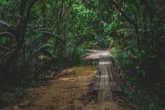 Wooden bridge leading to Lazy beach. Through the jungle  from Saracen Bay beach. Koh Rong Samloem Stock Photography
