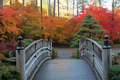 Wooden Bridge Leading to Red and Gold Autumn Trees Royalty Free Stock Photo