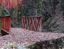 Wooden bridge with leaves royalty free stock image