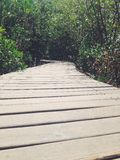 Wooden Bridge of Life Stock Photography