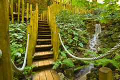 Wooden bridge and little water fall Royalty Free Stock Photo