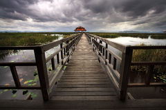 Wooden Bridge in lotus lake at khao sam roi yod national park Stock Photos