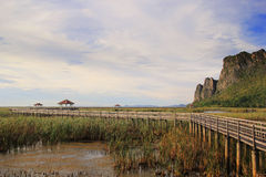 Wooden Bridge in lotus lake Royalty Free Stock Photo