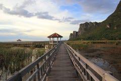 Wooden Bridge in lotus lake Royalty Free Stock Photo