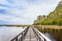 Wooden Bridge in lotus lake at khao sam roi yod national park Stock Images