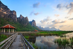 Wooden Bridge in lotus lake at khao samroiyod national park Stock Photo