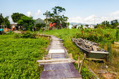 Wooden bridge through the mangrove reforestation Stock Photo