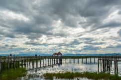 Wooden bridge in the marsh royalty free stock images