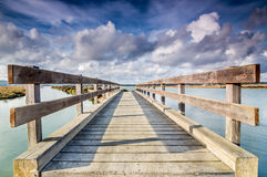Wooden bridge in the marshes Royalty Free Stock Photography