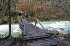Wooden bridge in mountain forest Royalty Free Stock Photo