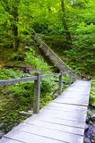 The wooden bridge in the mountains. The old wooden staircase leads up Royalty Free Stock Photo