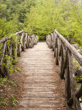 Wooden bridge in the mountains of Olympus, Greece Royalty Free Stock Photo