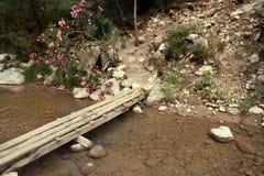 Wooden bridge in the mountains Stock Photos