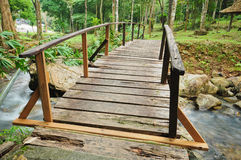 Wooden bridge in natural park Royalty Free Stock Images