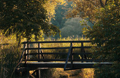 Wooden bridge in nature Stock Image