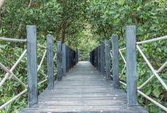 Wooden bridge in nature Stock Image