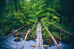 Wooden Bridge old over river Royalty Free Stock Photography