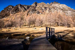 Wooden bridge Ossola Valley Stock Photo