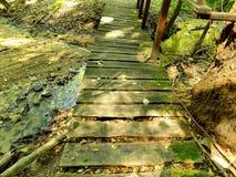 Wooden bridge over creek Stock Photography