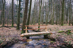 Wooden Bridge Over Forest Brook Royalty Free Stock Image
