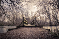 Wooden bridge over a frozen lake. In a forest Stock Photos