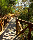 Wooden bridge over a gorge Stock Photos