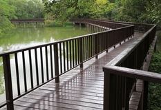 Wooden bridge over the lake Royalty Free Stock Images