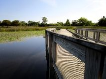 Wooden Bridge Over Lily Pads Stock Images