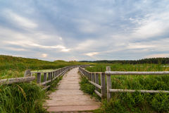 A wooden bridge over a marsh in the Cavendish Dunelands Royalty Free Stock Photos