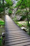 Wooden bridge over mountain brook Royalty Free Stock Image