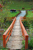 Wooden bridge over mountain river Royalty Free Stock Images